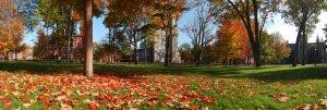 Bowdoin_College_Quad